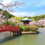 2020愛知県(岡崎・豊田・名古屋・瀬戸)の桜の見頃は?穴場の花見スポットも紹介!