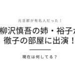 柳沢慎吾の姉・柳沢裕子の娘や元夫が有名人?きっかけや現在が気になる!【徹子の部屋】