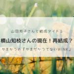 やまかつの横山知枝さんの現在は?やまかつwink再結成なるか。クニチャンネルで話題。