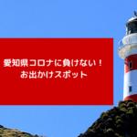 【最新版】愛知県、再開したおでかけスポットはどこ?注意点や再開予定を調査